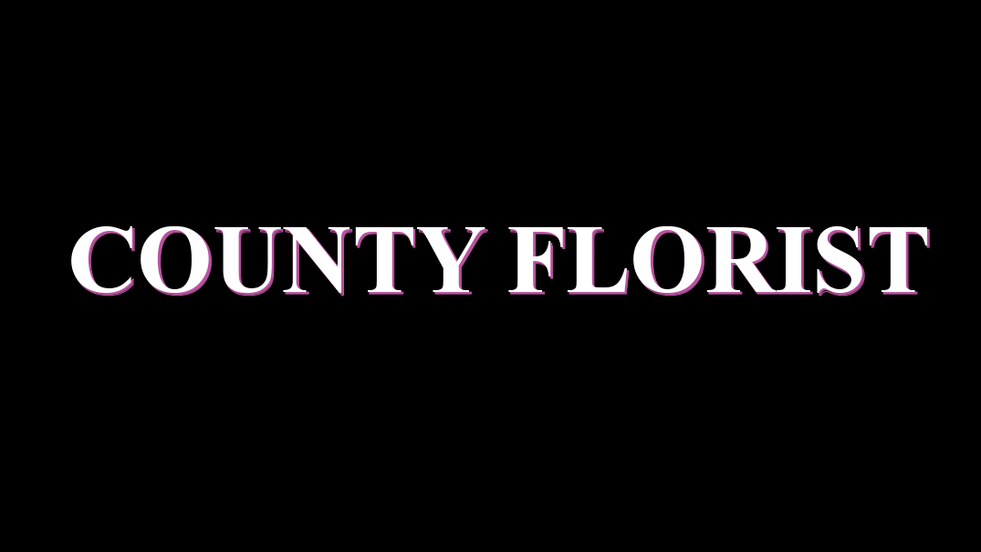 County Florist in Northampton - Friends of The McCarthy-Dixon Foundation